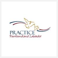 logo-practice